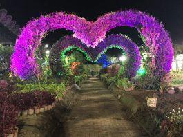 フィリピンアリーナ ガーデン 園内写真