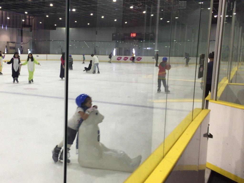 MOA スケート