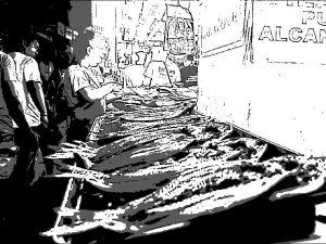 フィリピン マーケット 市場 魚