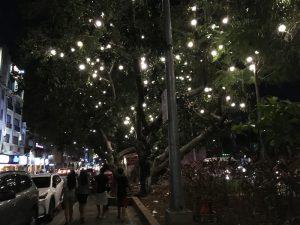 エルミタの夜の街