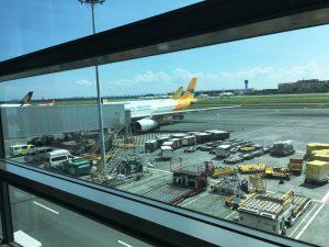 マニラ空港 第三ターミナル セブパシフィック
