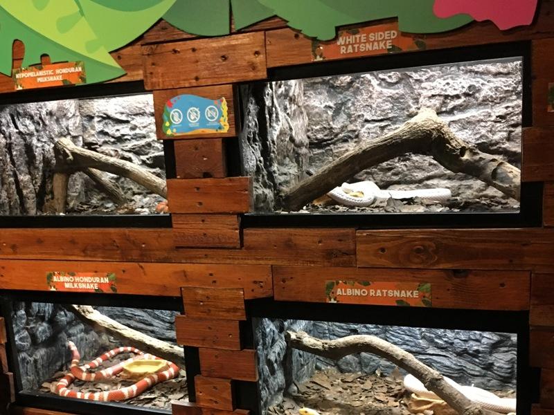 オーシャンパーク 爬虫類 蛇 ヘビ